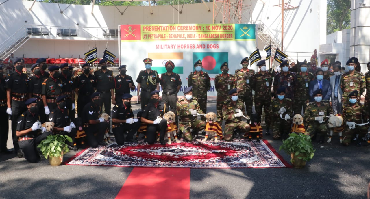 Indian Army handed over 20 military horses and 10 landmine detection dogs to Bangladesh Army