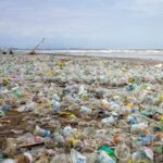 India and Germany signed an agreement on the problem of plastic waste entering the marine environment
